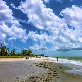 Boca Grande Beach by Lynne Pedlar