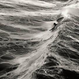 Body Surfing by Flying Z Photography by Zayne Diamond