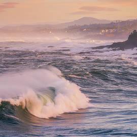 Boiler Bay Beauty by Darren White