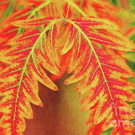 Bold Colorful Autumn Leaves by Sharon McConnell
