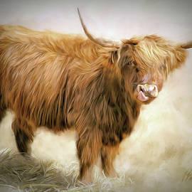 Bonnie Highland Calf by Pauline Black