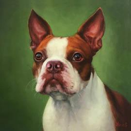 Boston Terrier  by Yana Golikova