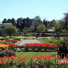 Botanical Garden by Johanna Zettler