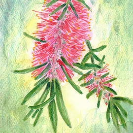 Bottle Brush by Deryn Van der Tang