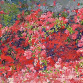 Bougainvillea in bloom by Simon Kozhin