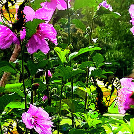Bountiful Rain by Gardening Perfection