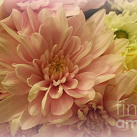 Bouquet of Soft and Lovely Blossoms by Dora Sofia Caputo