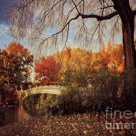 Bow Bridge - The Gold of Autumn by Miriam Danar
