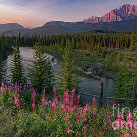 Bow River Sunset by Norma Brandsberg