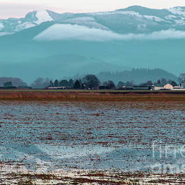 Bow Washington Wetlands Farm by Sea Change Vibes