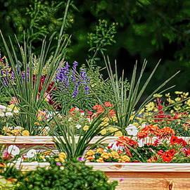 Box Garden by Maria Keady