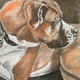 Boxer  by Ayesha Iqbal