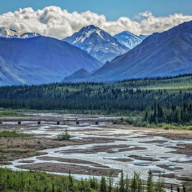 Braided River In Denali National Park by Robert Bales