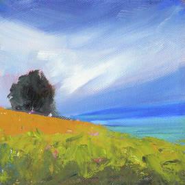Breezy Day by Nancy Merkle