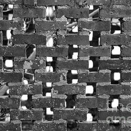 Brick Fence by Tom Gari Gallery-Three-Photography