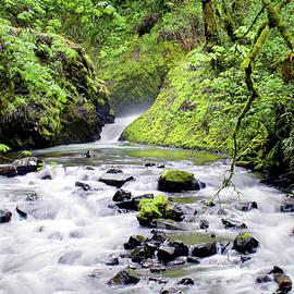 Bridal Veil Creek, Columbia Gorge by Douglas Taylor