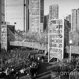 Bridge at the Park Chicago BW by DRD Images