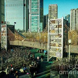 Bridge at the Park Chicago by DRD Images