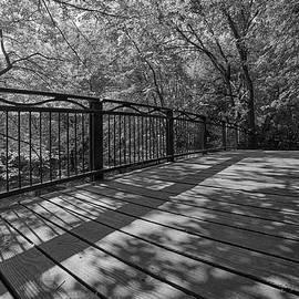 Bridge Over Minnehaha Creek at 14th Ave. by Jim Hughes
