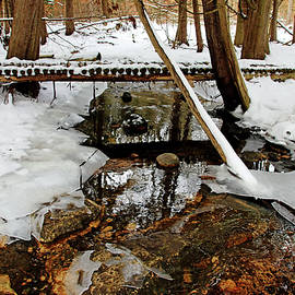 Bridge Over Winter Stream by Debbie Oppermann