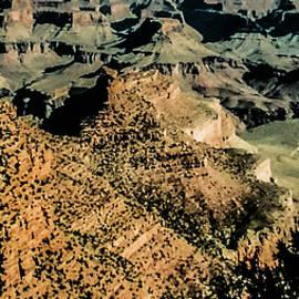 Bright Angel Trail by Lorraine Palumbo