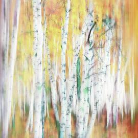 Bright Colored Birches by Terry Davis