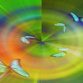 Bright flight by larisa Fedotova