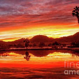 Bright Morning Reflections by Robert Bales