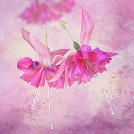 Bright Pink Fuchsia Flowers - Square by Patti Deters