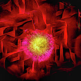 Bright Red Rose Abstract Art by Debra and Dave Vanderlaan