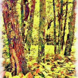 Brilliant Forest ap by Dan Carmichael