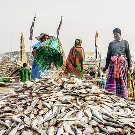 Bringing fish ashore by Alexey Stiop