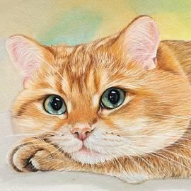 British Shorthair Cat by Rianns Art