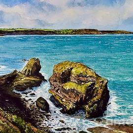 Broad Haven Pembrokeshire  by Andrew Read