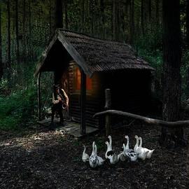 Broad Of Geese  by Sam Adams