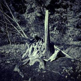 Broken into pieces by Jouko Lehto