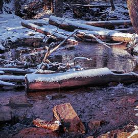 Brook at Hemlock Ravine Park  by Ken Morris
