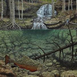 Brook Trout by Michael Winston