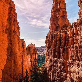 Bryce Canyon by Broken Soldier