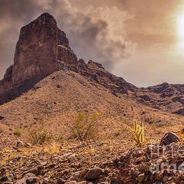 Buckskin Mountains Arizona by Mitch Shindelbower