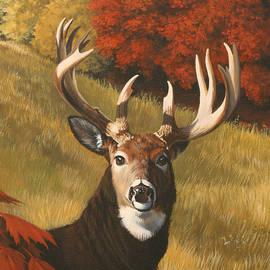 Bucksnort by Donna Goeddaeus