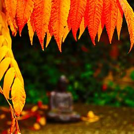 Buddha Under Fall Leaves by Loretta S