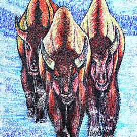 Buffalos by Viktor Lazarev