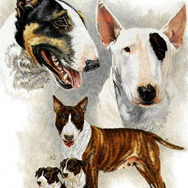 Bull Terrier Collage by Barbara Keith