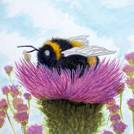 Bumble on a Thistle by Philip Harvey