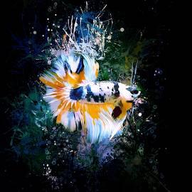 Bumblebee Betta Fish Vertical Portrait  by Scott Wallace Digital Designs