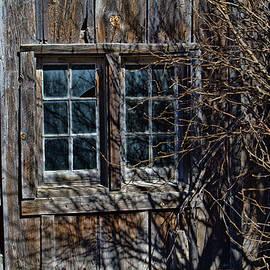 Bunkhouse Windows by Alana Thrower