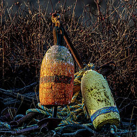 Buoys Anchor And Rope by Marty Saccone