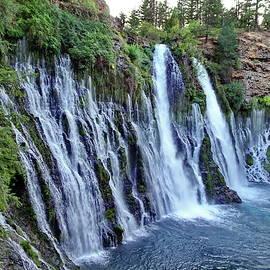 Burney Falls, California by Lyuba Filatova