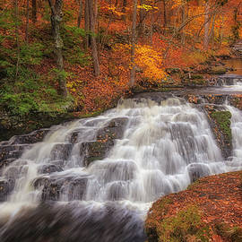 Bushkill Pennel Falls PA by Susan Candelario